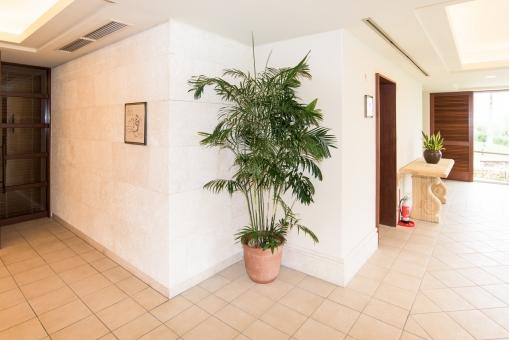 エントランス 植木 室内 タイル 大理石 廊下 ホテル 空調 扉 消火器 南国 トロピカル リゾート ホテル 入り口 コーナー きれい
