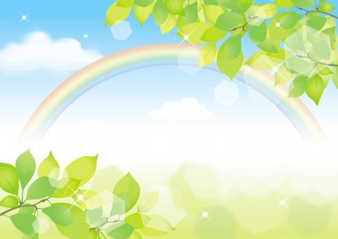 青空 晴天 空 雲 雨上がり 梅雨 初夏 春 夏 木漏れ日 樹木 みどり 若葉 新緑 キラキラ 光 背景 素材 バックグラウンド 虹 レインボー