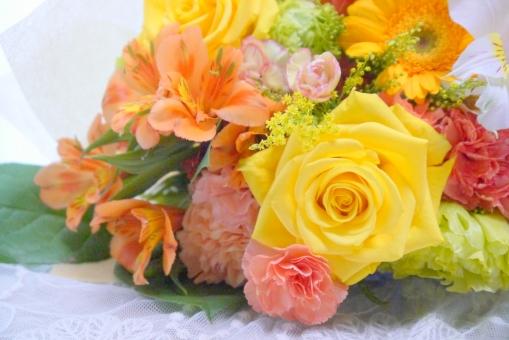 オレンジ ビタミンカラー ホワイトデー ブーケ 結婚式 ガーベラ 卒業 記念日 ホワイトデー 入学 カーネーション 結婚記念日 結婚 明るい マクロ アップ テーブルフォト 薔薇 ばら 背景 壁紙 母の日 父の日 緑 植物 初夏 5月 6月 五月 六月 おめでとう プレゼント メッセージ カード フラワーアレンジ 背景素材 花 バラ 行事 感謝 カラフル 美しい 綺麗 きれい かわいい 華やか はなやか アロマ カラー 黄色 健康 5月 6月 贈る 贈り物 ギフト フラワーアレンジメント 春 夏 秋 冬 10月 11月 幸せ 幸福 花束 美容 エステ イメージ 誕生日 お祝い
