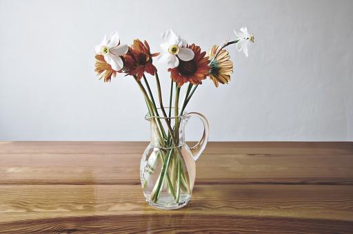 花  自然植物 かわいい  花びら フラワー 咲く  自然 風景 屋内 背景素材  庭 園芸 ガーデニング  葉 茎  白い花 白 花瓶 ピッチャー 生け花 生花 切り花 テーブル ガーベラ オレンジ