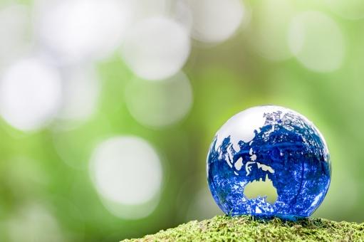 緑の中の青い地球儀の写真