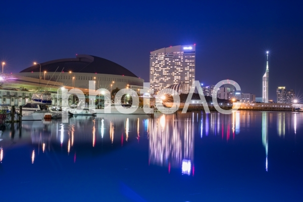 福岡夜景/福岡タワーGWイルミの写真