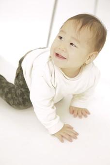 子ども 子供 こども キッズ 子 赤ちゃん 赤ん坊 乳児 幼児 ベイビー 笑顔 笑う 人物 室内 屋内 部屋 座る ハイハイ 全身 椅子 イス いす 白背景 四つん這い よつんばい 日本人  mdfk008