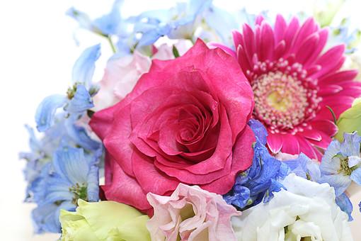 ミニブーケ フラワーアレンジメント 花束 希望 常に前進 崇高美 しとやか 上品 感銘 白背景 ホワイトバック 白バック 薔薇 ばら バラ ガーベラ ピンクの花 青い花 ギフト プレゼント 植物 フラワー 種子植物 花弁 花びら 生花