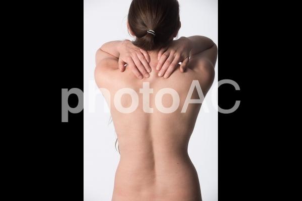 女性の背中5の写真