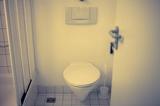 トイレ トイレット 厠 かわや 手洗 御手洗い 手洗い場 洗面所 手洗場 手洗い 隠所 便所 化粧室 お手洗い 御手水 閑所 排泄 室内 屋内 金具 水回り 建築 内装 空間 生活 ライフスタイル 家 個室 便器 ユニットバス