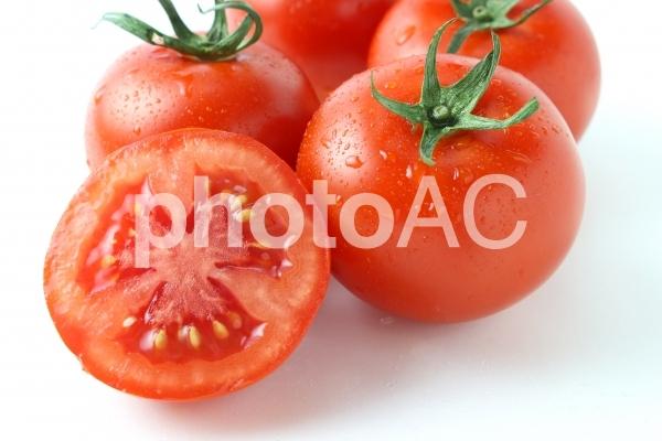 採れたてトマトの写真