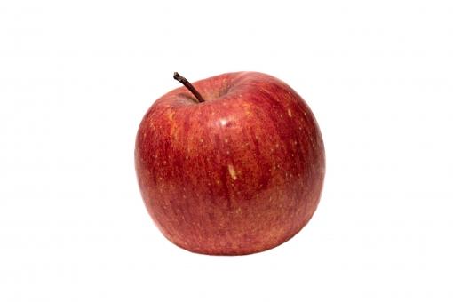 リンゴPSD(背景透過)の写真