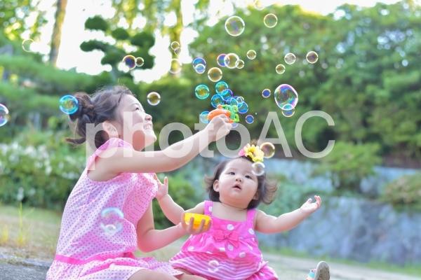 シャボン玉で遊ぶ子供たちの写真