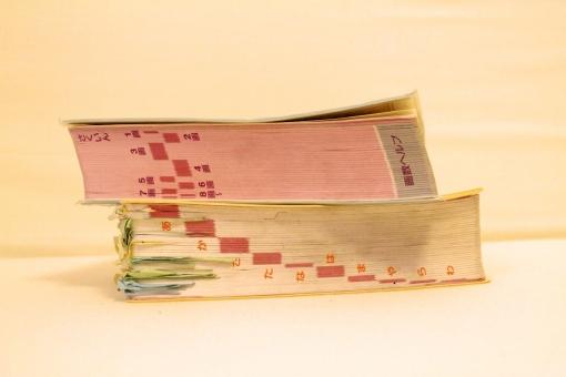 辞書 辞典 国語辞典 国語 漢字辞典 漢字 小学生 小学 勉強 道具 本