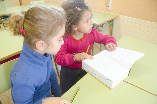 人物 生物 人間 外国人 子ども かわいい 小さい キッズ 生徒 学生 学童 幼い 学校 勉強 学び 教育 授業 クラス まじめ 教室 机 教科書 分厚い 本 女子 女の子 クラスメイト 友達 読む mdfk028  mdfk033