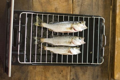 スズキの下処理 スズキ セイゴ コッパ ハクラ 魚 さかな サカナ 鮮魚 下処理 調理 料理 魚料理 お魚 海の幸 焼く グリル 魚焼き網
