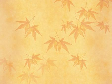 モミジ もみじ 紅葉 椛 かえで カエデ 楓 葉 植物 自然 秋 余白 背景 背景素材 バックグラウンド テキストスペース コピースペース 暖色 空間 質感 テクスチャ ベージュ 赤色 赤 季節 散らばる 散る 散布 透ける 透かし 半透明 加工 写真加工