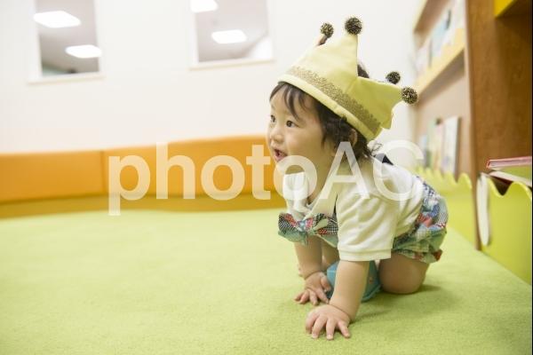 ハイハイをする男の子の写真
