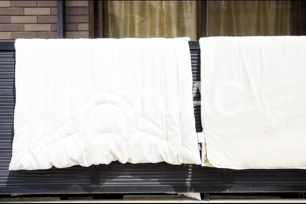 布団の写真
