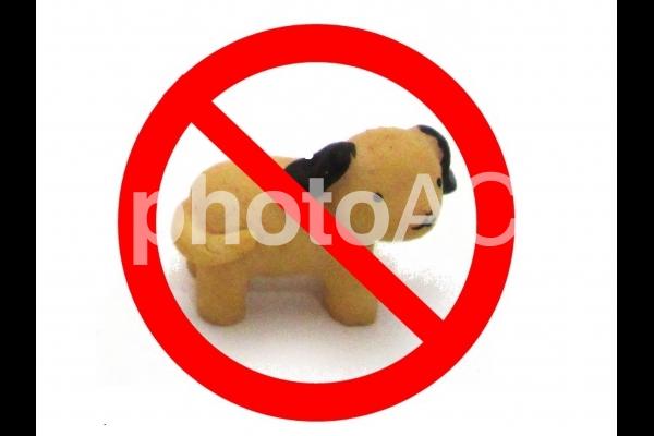 動物禁止の写真