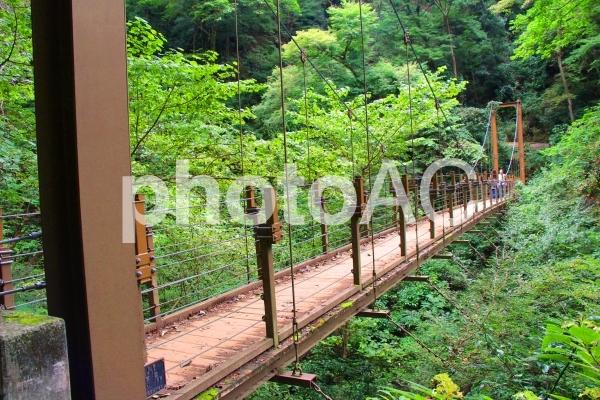 高尾山の吊り橋の写真