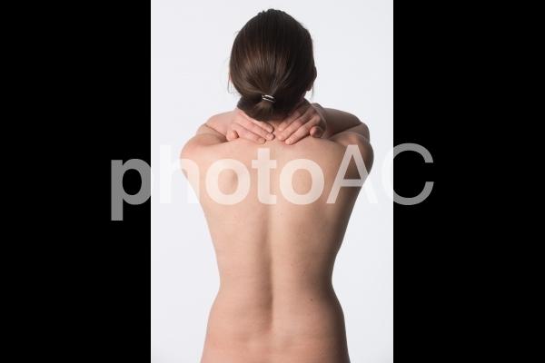 女性の背中8の写真