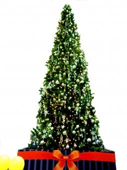 クリスマスツリー ツリー 木 クリスマス メリークリスマス Xmas Christmas christmas 背景白 切り取り 切取 キリトリ 切り抜き 切抜 キリヌキ 12月 クリスマス素材 素材 冬 winter merrychristmas サンタ サンタクロース 風船 バルーン 光 ピカピカ 電飾 木