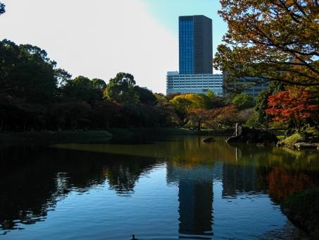 都会の紅葉した庭園1の写真