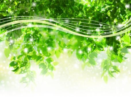 自然 植物 風 そよ風 波 空気 流線 木漏れ日 木洩れ日 太陽 日 黄緑 新緑 明るい 山 林 葉っぱ 木の葉 木葉 はっぱ 爽やか 木の枝 小枝 風景 木 樹木 森 グリーン エコ エコロジー 環境 eco eco 森林 森林浴 森林セラピー いやし リラックス リラクゼーション やすらぎ 安らぎ マイナスイオン 健康 美容 背景 背景素材 テクスチャ テクスチャー バックグラウンド 3月 4月 5月 6月 7月 8月 9月 10月 夏 緑 春 初夏 癒し きらめき キラメキ 優しさ やさしい 優しい