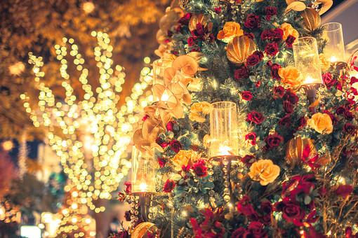 風景 町並み 自然 スケッチ イメージ 背景 影 光 置く 癒し クリスマス 冬 季節 シーズン ムード おしゃれ 雰囲気 演出 屋外 かわいい クリスマスツリー ツリー スタイリッシュ 花 ゴージャス 美しい イルミネーション きれい バラ オーナメント