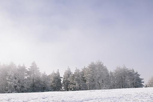 冬の風景 山 やま 冬 風景 景色 雪 雪山 雪国 ゆき 雪景色 冬化粧 銀世界 白銀 寒冷 寒い 雪原 降雪 白 純白 パウダースノー スノー 天気 自然 大自然 大地 木 樹木 植物 空 光