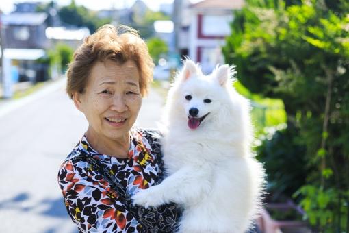 人物・犬の写真