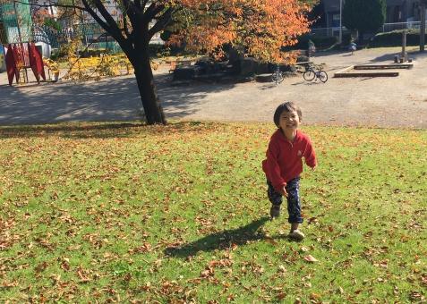 走る子供の写真