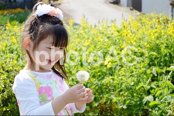 綿毛を持つ女の子の写真