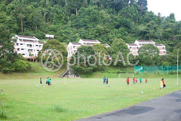 海外のサッカー風景の写真