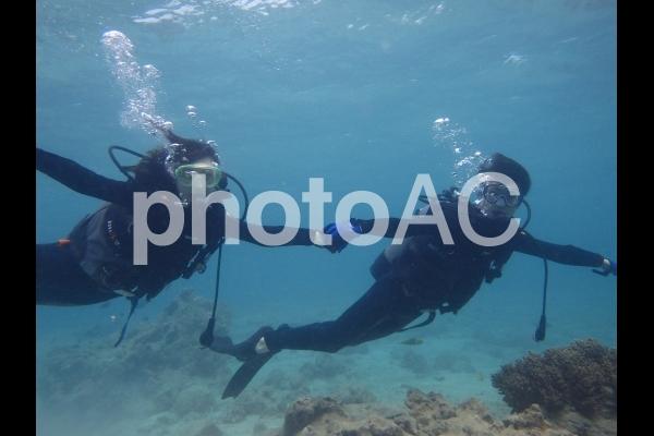 スキューバダイビング1の写真