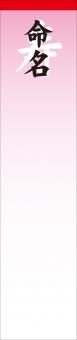 命名 名前 短冊 内祝い 内祝 孫 子供 産まれる 出産 祝い 祝 名づけ 名付け 素材 背景 ピンク 桃色 寿 お祝い事 御慶 慶事 悦び ライフイベント ライフ イベント 出生 新生 生誕 誕生 祝事 白 紅白 贈り物 ギフト 02 命名札