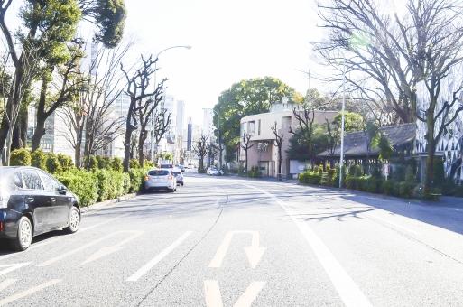 代官山 旧山の手通り 旧山手 渋谷 東京 通り ストリート 街路樹 空 青空 晴れ 車 駐車 木 緑 休日 おしゃれ 高級 カフェ レストラン ショップ ショッピング 観光 町並 街 建物 ビル 風景 景色 話題