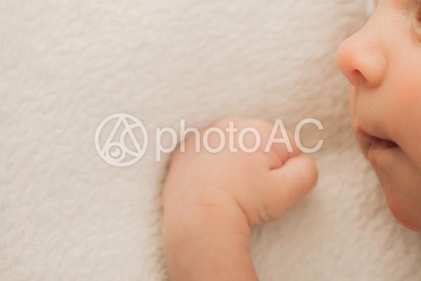 赤ちゃんの横顔2の写真
