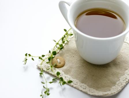 ハーブティ ハーブティー お茶 紅茶 飲み物 コースター 葉 葉っぱ ハーブ レモンタイム タイム 植物 リラックス 美容 健康 癒し