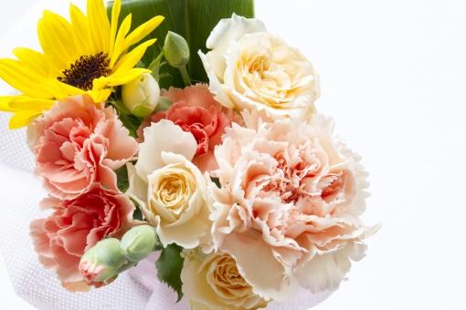 カーネーション ひまわり 白バラ ばら 薔薇 バラ 花 植物 自然 癒し 花束 ブーケ リボン お祝い プレゼント 初夏 5月 6月 7月