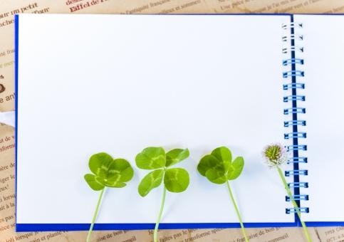 スケッチブック クローバー 植物 草 四葉のクローバー 四葉 幸運 ラッキー 幸せ 緑 コピースペース 余白 メモ シロツメクサ シロツメグサ 野花 草花 四ツ葉 四つ葉 ラッキーアイテム