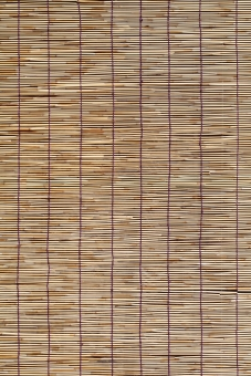 簾 すだれ スダレ インテリア 竹 竹材 枝 日よけ 日除け 清涼 夏 涼しい 涼しさ 涼 風情 風流 情緒 和風 雑貨 背景 素材 葦 アジア 日本 文化 日本文化 伝統 バックグラウンド 茶色 黄色 質感 テクスチャ テクスチャー 模様 パターン 糸 紐 編む 部分 一面 アップ クローズアップ 全面 無人