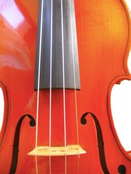 バイオリン ヴァイオリン 弦楽器 楽器 音楽 駒 E線 金色
