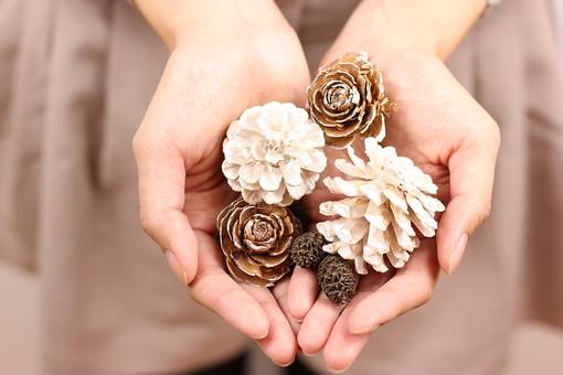 プレゼント ギフト 手 手元 贈る  手のひら 手の平 掌 両手 指 贈答 贈答品 気持ち 気持 松 松ぼっくり 秋 冬