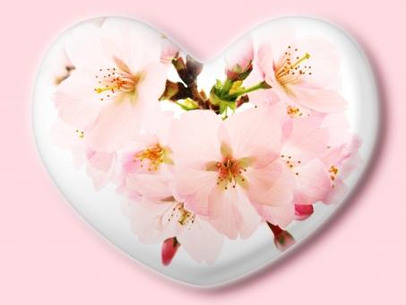 ハート はーと heart 素材 背景 アイコン ラブ love 愛 ロマンチック バレンタイン フレーム クリスタル風 枠 さくら サクラ 桜 ピンク