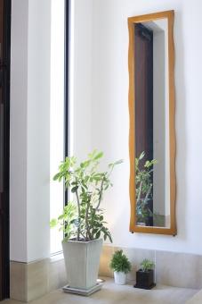 かわいい 光 室内 植物 玄関 オシャレ タイル 明るい 輝き 鉢 鉢植え ライト ライトアップ 靴べら 注文住宅 鏡