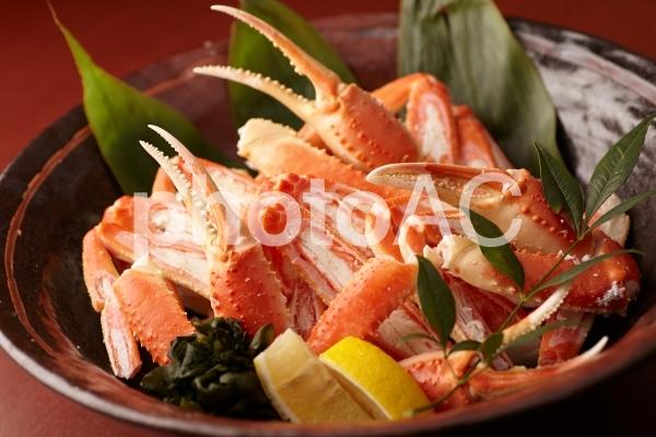 蟹イメージの写真