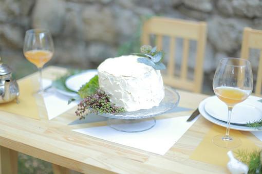 屋外 ガーデンウェディング ケーキ ウェディングケーキ 生クリーム 結婚式 披露宴 ケーキカット ブライダル ウェディング ガラスの器 植物 テーブルセッティング おもてなし スイーツ 椅子 イス 甘い お祝い ショートケーキ 料理 食べ物 白 デザート 手作り 葉 飲み物 カトラリー ナイフ ポット 食器 グラス ワイングラス シャンパングラス