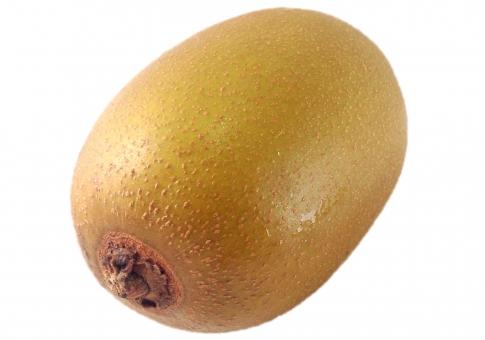 果物 フルーツ 食べ物 茶色 青果 切り抜き キウイ ゴールデンキウイ 背景透過