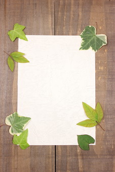 葉 葉っぱ 緑 植物 ナチュラル エコ エコロジー 自然 新緑 ピュア 葉脈 木 木材 板 アンティーク レトロ テクスチャ 背景 壁紙 フレーム 枠 紙