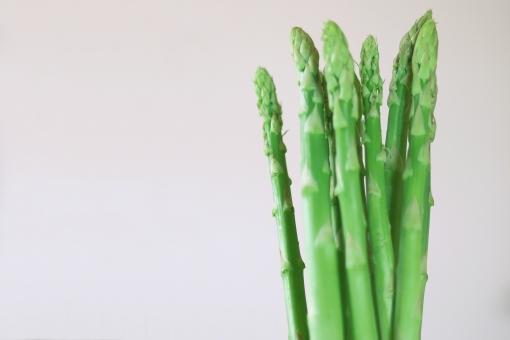 アスパラ グリーンアスパラ アスパラガス グリーンアスパラガス 野菜 ベジタブル ビーガン ベジタリアン ダイエット食材 ダイエット 食材 ゆでアスパラ 低カロリー 美容 健康 食物繊維 ビタミンa ビタミンb1 ビタミンb2 ビタミンc ビタミンe アスパラギン酸 葉酸 食料 食品 材料 食べ物 茎 植物 緑 家庭菜園 プランター栽培 ハウス栽培 グリーン 農業 農園 農家 栽培 収穫 スーパー 白背景 コピースペース テキストスペース