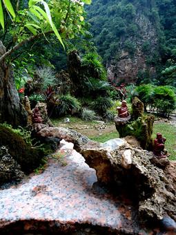 パキスタン パキスタン・イスラム共和国 巴基斯坦 南アジア アジア 外国風景 外国 海外 景色 風景 自然 緑 植物 樹木 樹 木 幹 大木 葉 ジャングル 熱帯雨林 木肌 岩肌 折れる 枯れる