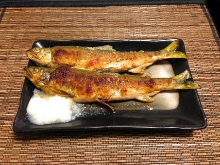 あゆの塩焼き アユの塩焼き 鮎の塩焼き 焼き魚 川魚 魚料理 焼き物 和食 日本食 日本料理 食べ物 食品 食材 食器 料理 調理 gourmet グルメ 食事 食卓 食事の風景 食卓の風景 淡水魚